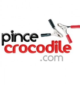 pince crocodile d marrer une voiture aux pinces croco 30sec. Black Bedroom Furniture Sets. Home Design Ideas